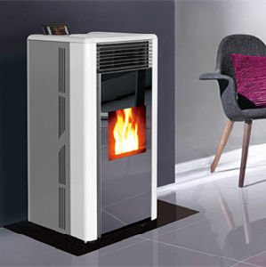 Italian Pellet Stoves/ Wood Burning Fireplace pictures & photos