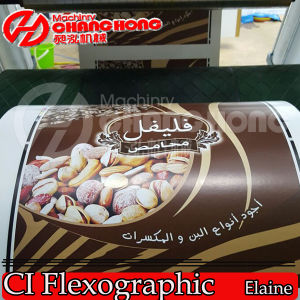 Largest Flex Printing Machine/Central Drum Printing Machine/Satellite Printing Machine pictures & photos