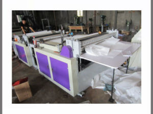 Economic Type Non Woven Fabric Sheet Cutting Machine (DC-HQ 500-1500) pictures & photos