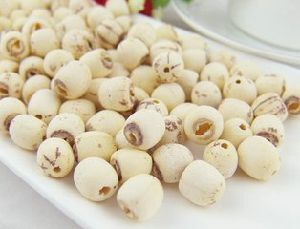 100% Natual Lotus Root Extract / Lotus Seed Extract pictures & photos