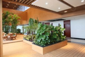 Hot Greener Wood Wall Board WPC Decking Great Wall Panel pictures & photos