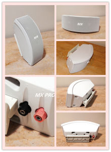 Boss 151se Ceiling Home Speaker pictures & photos