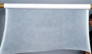 PTFE Porous Membrane/Film - H11/95% pictures & photos