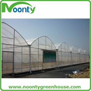 Economical Agriculture Multi-Spans Film Green House (NOONTY) pictures & photos