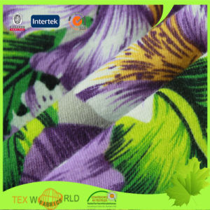 Textile Stretch Knitting Cotton Spandex Printed Fabric (WCE1105)