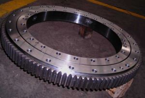 Slewing Ring Used on Blow Molding Machine pictures & photos