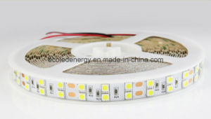 22W Ce and Rhos 120SMD5050 Red LED Strip pictures & photos
