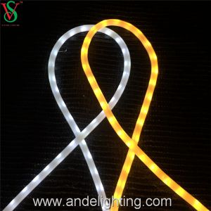 Flex LED Rope Light pictures & photos