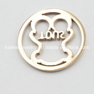 Stainless Steel Coin Dics in Interchangable Coin Pendant pictures & photos