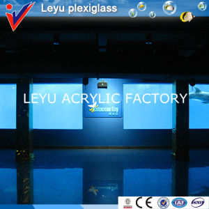 Large Acrylic Panel Plexiglass Sheet pictures & photos