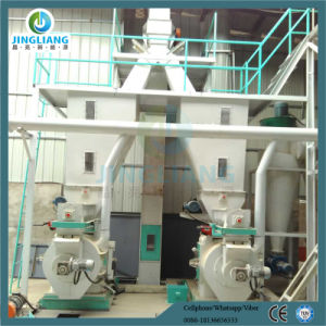 Automatic Turnkey Wood Pellet Line Rice Husk Pellet Line pictures & photos
