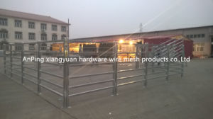 Hot Dipped Galvanized Horse and Cattle Fence Panel pictures & photos
