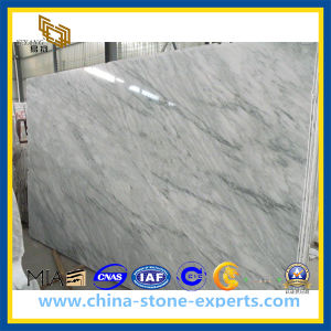Polished Oriental White Marble Slab (YQZ-MS1015) pictures & photos