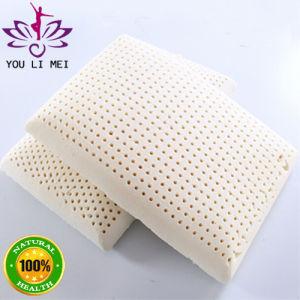 100% Natural Latex Foam Pillow Shaped Like Bread