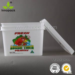 Wholesale 10L Rectangular Printing Plastic Container pictures & photos
