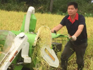 10HP Mini Combine Rice Harvester for Agricultural/Farm pictures & photos