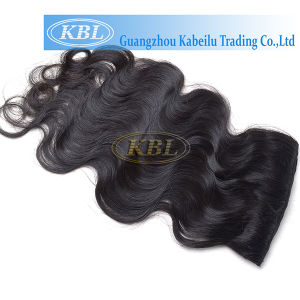 Women Hair Brazilian Clip-in Hair pictures & photos