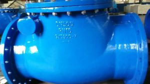 Cast Iron Swing Check Valve, DIN 3202 F6 pictures & photos