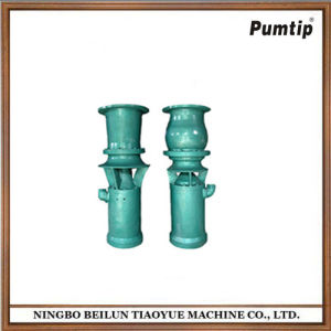 Large Diameter Submersible Axial Flow Pump for Sale pictures & photos
