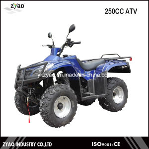 200cc Air Cooled/Water Cooled ATV, Chain/Shaft Drive Big Power Quad 4 Wheelers 2016newest Quad Bike pictures & photos