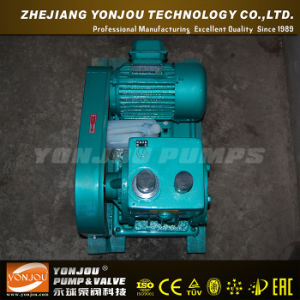 Yonjou Vacuum Pump (2X) pictures & photos