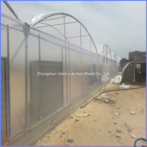 Anti-Static Frosted Polycarbonate Multi Wall Hollow Sheet for Public pictures & photos