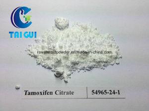 Anti-Estrogen Powder Nolvadex /Tamoxifen Citrate pictures & photos