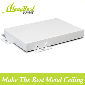 Good Price Exterior Ceiling Panel pictures & photos