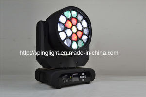 19X15W RGBW 4in1 LED Stage Moving Head Pub Light DJ