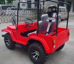 Quality 200cc Mini Jeep with CVT Reverse for Adult pictures & photos