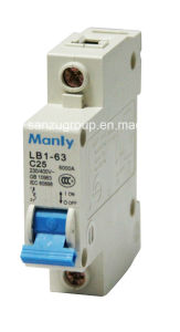 Lb1-63 (BA47-19) Mini Circuit Breaker pictures & photos