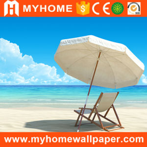 Sea and Beach Scenery 3D Sky Wallpaper Murals pictures & photos