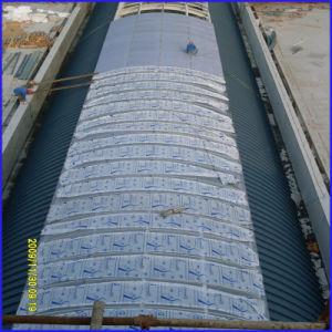 Construction Materials Best Polycarbonate Price pictures & photos