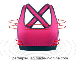 High Quality Ladies Camisole Pure Color Yoga Bra pictures & photos