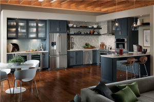 American Shaker Style Contemporary Grey Kitchen pictures & photos