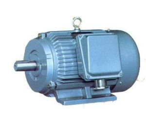 Y-H High Slipping Marine Electric Motor pictures & photos