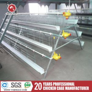H Type Chicken Cages pictures & photos