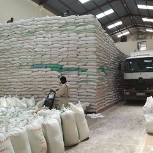 5t Flour Mill Machine Factory with Super Profit pictures & photos