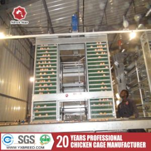 Wholesale Chicken Coops of Poultry Breeding Equipment pictures & photos