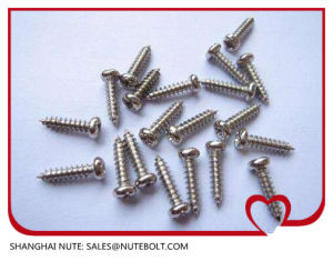 Self Tapping Screw Stainless Steel 304 316 DIN7981 DIN7982 pictures & photos