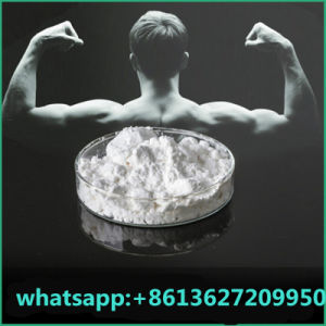 China Supply Human Growth Testosterone Enanthate Steroid pictures & photos