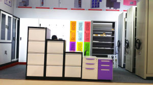 Government Use Professional Mobile Archive Shelves Cabinet Metal Mass Shelf pictures & photos