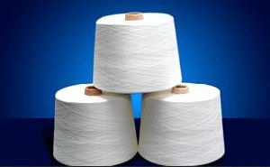100% Ring Spun Viscose Slub Yarn Ne 55/1* pictures & photos