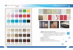 High Pressed Laminate Sheet/HPL for Direcotion pictures & photos