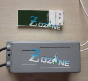 2g Ozone Generator Used with Ceramic Ozone Plate pictures & photos