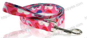 Printed Nylon Dog Leash and Leash, Pet Leash (YD115) pictures & photos