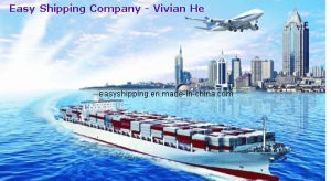 Consolidate Shipping Service From China to Spain Portugal pictures & photos