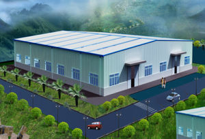 Durable Light Steel Structure Warehouse (DG1-011) pictures & photos