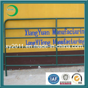 Hot Sale! ! ! Professional Factory Manufacture Galvanized Welded Mesh Panels pictures & photos