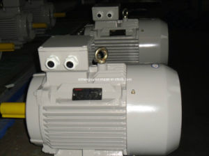Y2 Series Cast Iron Three Phase AC Induction Electric Asynchronous Motor pictures & photos